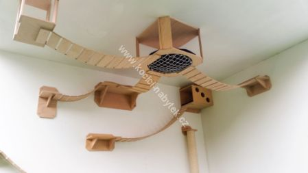 Picture for category Cat ceiling furniture
